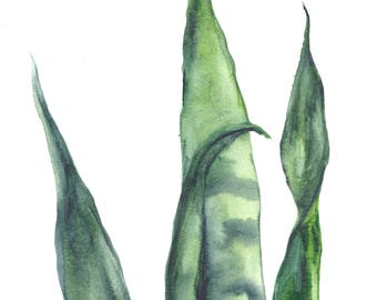 Original 8 x 10 inch watercolor painting of grass leaves by Meredith O'Neal
