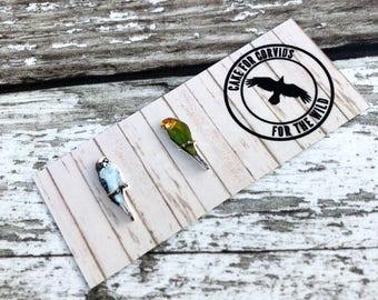 Budgie Earrings, Budgies Studs, Budgerigar Earrings, Budgerigar Studs, Blue Budgie, Green Budgie, Parrot Earrings