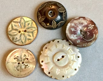 5 engraved / carved mother of pearl shell buttons - Victorian / Edwardian