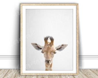 Animal nursery art Animal print art printable Safari animal print art Giraffe wall art print Animal canvas print art Animal wall art