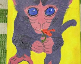 My little monkey.