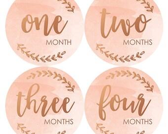 Modern Rose Gold Baby Sticker, Baby Girl Monthly Stickers, Modern Milestone Sticker, Rose Gold Monthly Baby Sticker, Baby Shower Gifts