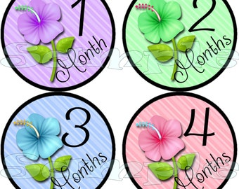 Monthly flower stickers set Baby Shower gift Baby Month Stickers Baby Girl Infant month stickers Onepiece Stickers Month to Month 1-12 month