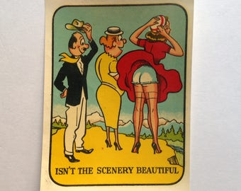 Vintage Pin Up Water Slide Decal Isn't The Scenery Beautiful
