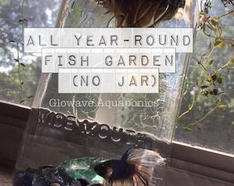 All Year-Round Fish Garden (No Jar)