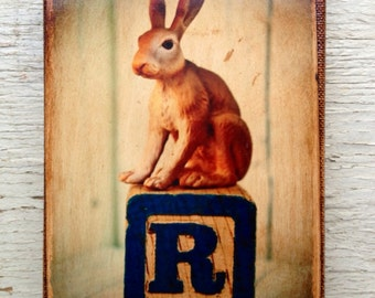 Vintage Toy Rabbit   Art/Photo - Wall Art 4x6