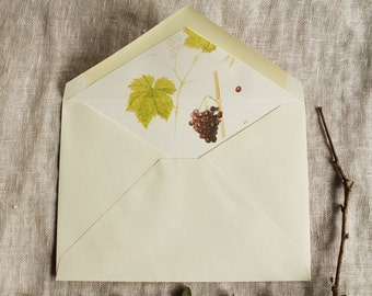 Vineyard Envelope Liners Download | Grape Lined Envelopes a2 | Grape Vine Envelope Liners a7 | Winery Wedding Invitation Envelope Liners