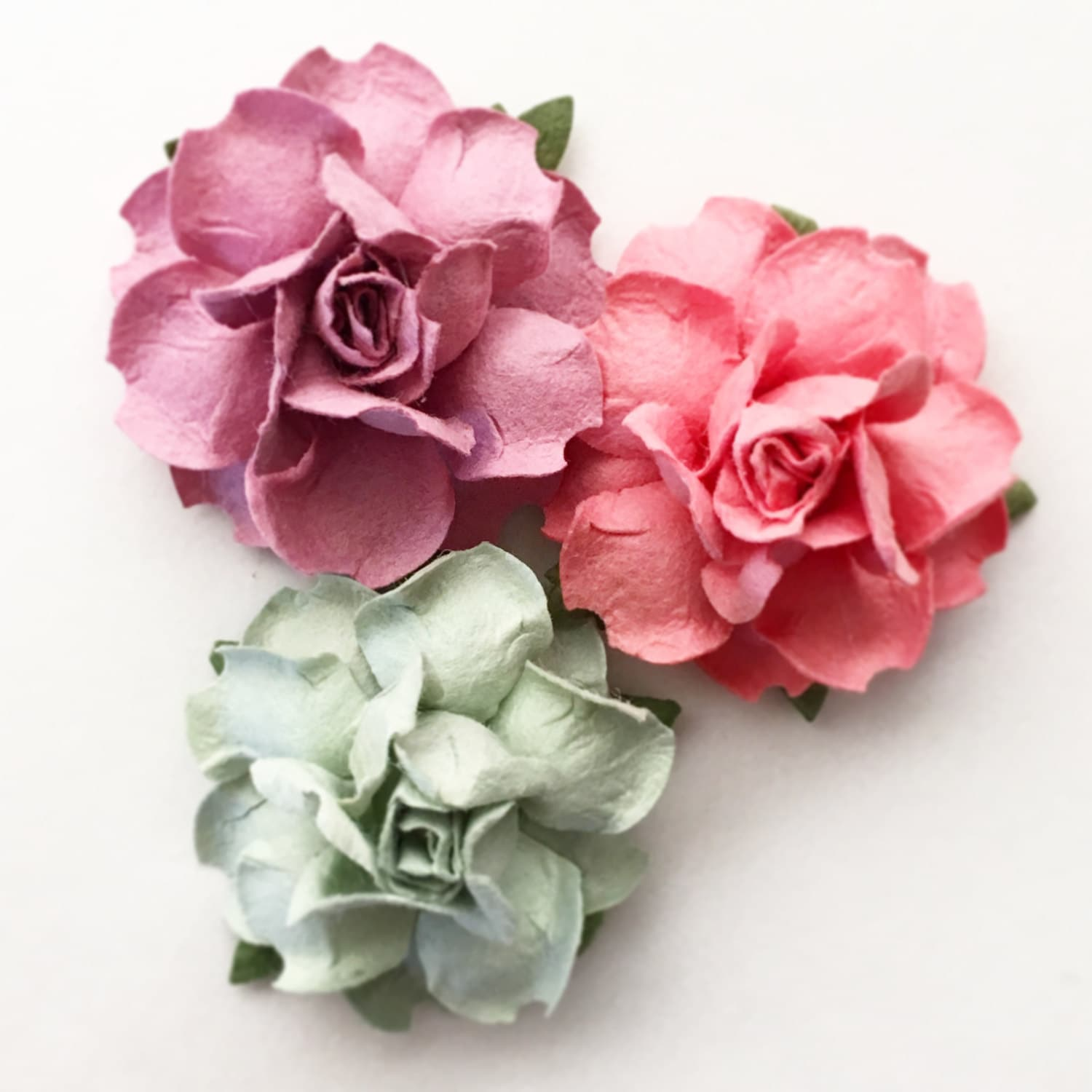 DIY Succulent Wreath. Succulent Wedding Favor. Succulent