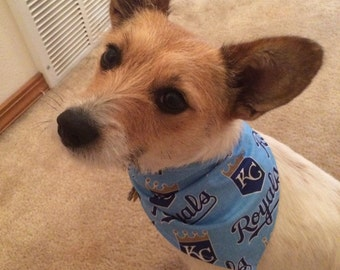 Kansas City Royals Dog Bandana
