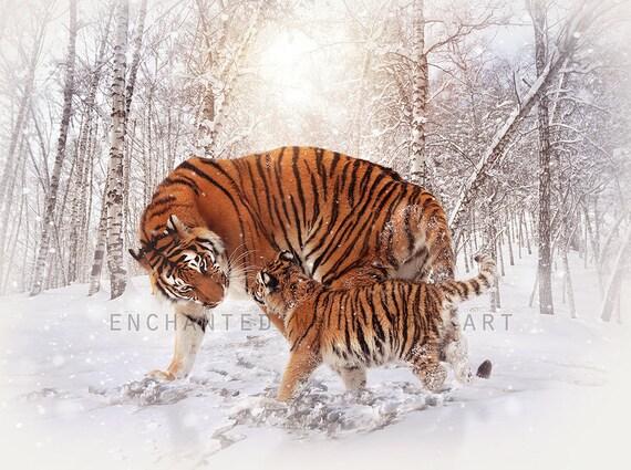 Mother tiger and cub art print