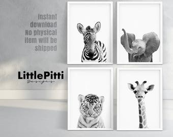 Safari nursery wall art, nursery print set, jungle animals, zebra, elephant, giraffe, tiger, nursery set of 4, baby animal photo instant