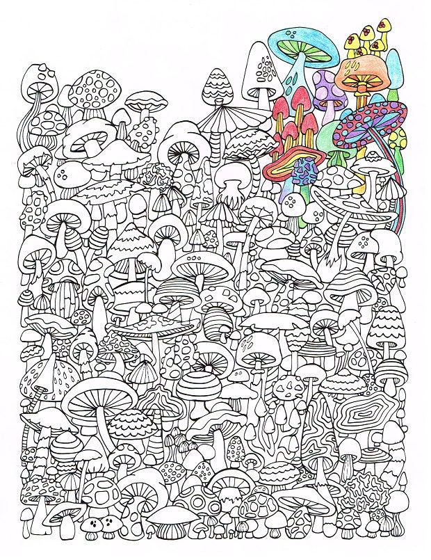 Adult Coloring Page Mushrooms Printable For