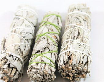 White Sage Smudge Stick // 4 inch White Sage Smudge Bundle // California White Sage Smudge Stick // Smudge  // Shamanic Healing // Reiki