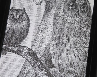 Dictionary Art Print Owl Art Print Owl Dictionary Art Print Vintage Dictionary Book Page Print Upcycled