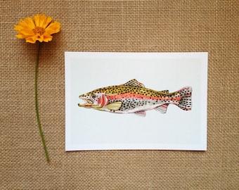 Rainbow Trout, 4 x 6 Mini Art Print