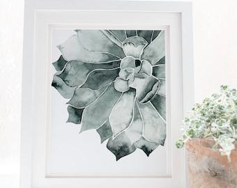 Affiche de cactus, impression succulente, cactus impression, art de Cactus, Cactus de cuisine, imprimable de Cactus, Cactus wall art, planche botanique, tropiques,