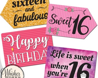 Plastic Photo Booth Phrases - SWEET SIXTEEEN MIX - Set of 2 colorful signs for a sweet 16 birthday party