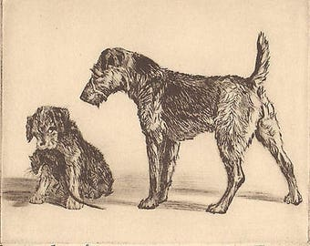 "Diana Thorne's Terriers ""Caught Or Found "" Vintage 1935 Artwork Dog Bookplate Print from Etching"