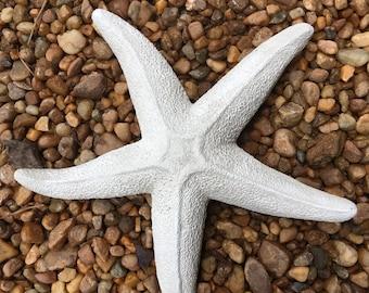 Concrete Cement Starfish