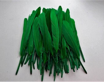 set of 10 dark green feathers 10-15cm
