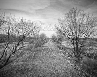 Trail by the River Photography Print