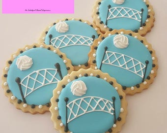 Decorated Volleyball Cookies Sports Iced Sugar ~1 Dozen~Frost Yourself Cookies