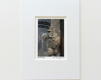 Small Art, Italian Print, Bathroom Art, Italy Travel Photography, Gargoyle Fountain Photograph, Bathroom Decor, 5x7 Matted Stocking Stuffer
