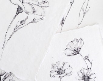 Floral Prints / Botanical prints / Recycled handmade paper