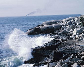 SALTY SEA AIR - Clamshell Wax Melts - Paraffin Wax - Tarts - Scallops - Melting Wax - Scented Wax