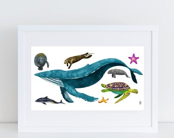 Sea Creatures - Signed Print