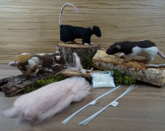 Realistic Ratty Feet Kit, Needle Felting Kit, Creature Creation