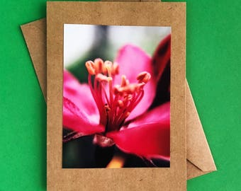 Handmade greeting card - note card - blank note card - thank you card - Mother's Day card - any occasion card