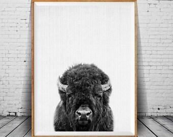Bison Print, Buffalo Nursery Art, Buffalo Wall Decor, Black and White Animal Print, Printable Black and White Nursery Decor, Animal Poster