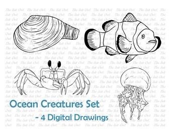 Ocean Creature Line Drawing Set - x4 - Clownfish, Clam, Crab, Jellyfish - EPS, PNG, JPG - Digital Vector Image