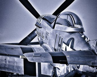 P-51 At Rest Fine Art Print