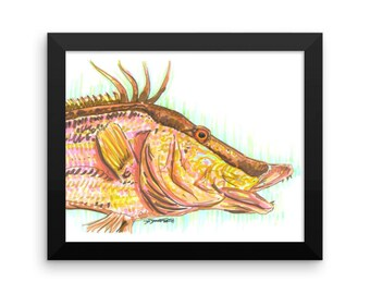 Hogfish Art Print
