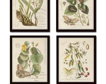 Vintage Butterfly and Botanical Collage Print Set No.1, Giclee, Prints, Botanical Prints, Wall Art, Prints, Vintage Butterfly Prints, Art