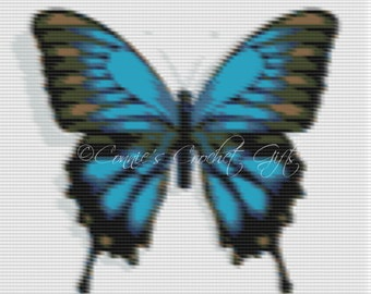 Basic Graph-Butterfly-4