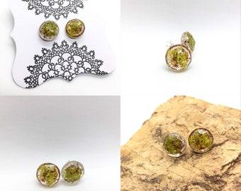 Natural Moss Resin Stud Earrings
