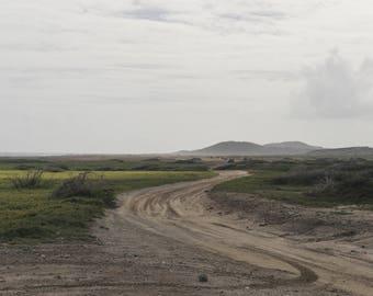 Aruba National Park *Multiple Sizes Available* Color Photograph Print, Fine Art Photography