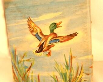 Vintage Dodo The Little Duck Hardcover Childrens Book