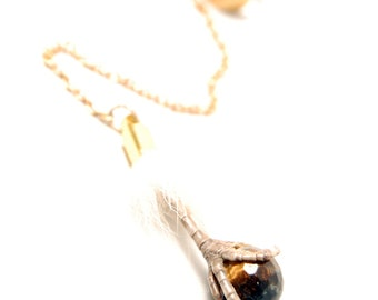 Couture Taxidermy Sparrow Talon Clutching Tigers Eye Pendant Earcuff