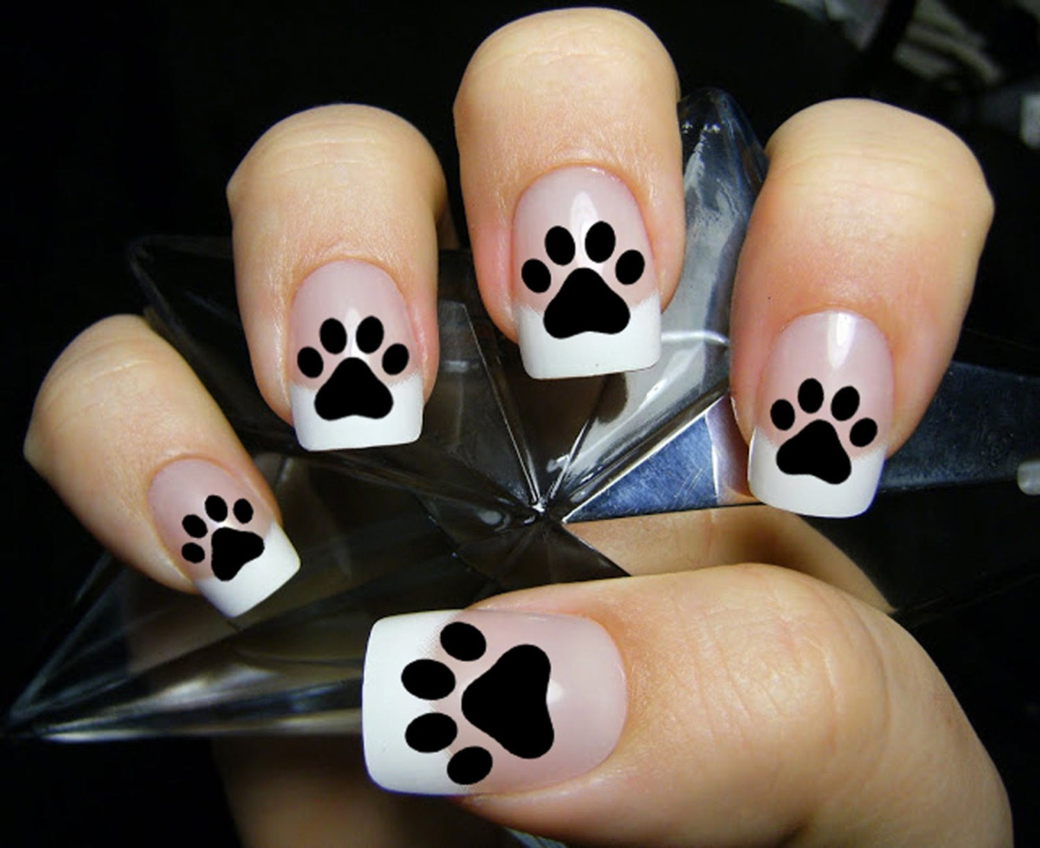 48 PAW PRINTS Nail Decals (PAW) - Kitten Puppy Dog Paws Black Cat ...