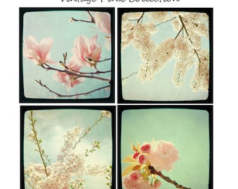 Vintage Flower Photography Set - Four Photographs - Pink  Mint Aqua Cherry Blossoms and Magnolia Flowers TTV Vintage Flower Photo Set