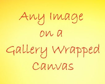 Landscape Photography, Choose Any Image from this Shop for a Gallery Wrapped Canvas, Flower Photography, 5 x 7 & Up, Photo Canvas Wall Art
