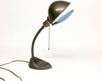 Gooseneck Lamp, Even Glo Daylite Lens, Gooseneck Desk Lamp, Industrial Desk  Lamp,