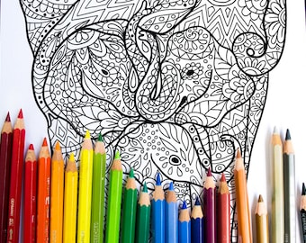 Elephant Family - Adult Coloring Page - Kids Coloring Page