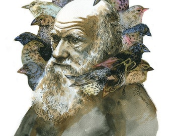 Charles Darwin with Finches portrait print in multiple sizes