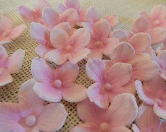 """Pink Sugar Hydrangeas """"By the Dozen"""""""