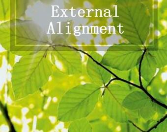 External Alignment - 5 Card Reading